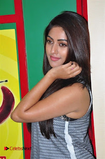 Actress Anu Emmanuel Pictures in Jeans at Radio Mirchi For Majnu Movie Promotion  0053.jpg