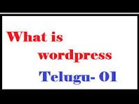 what is wordpress Telugu