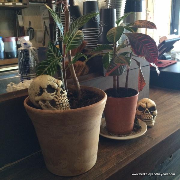 Sweetleaf Coffee Long Island City