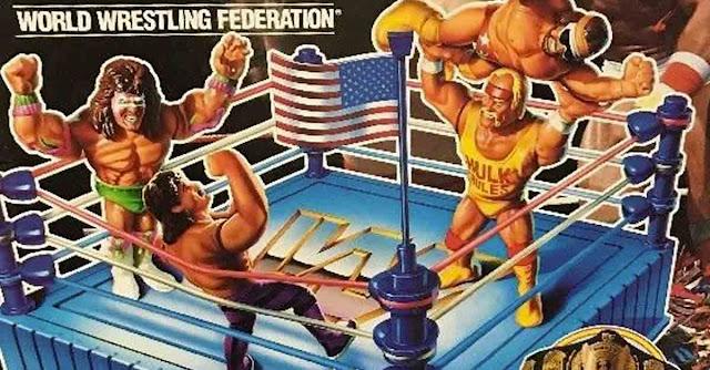 action figure wrestling Hasbro Gig