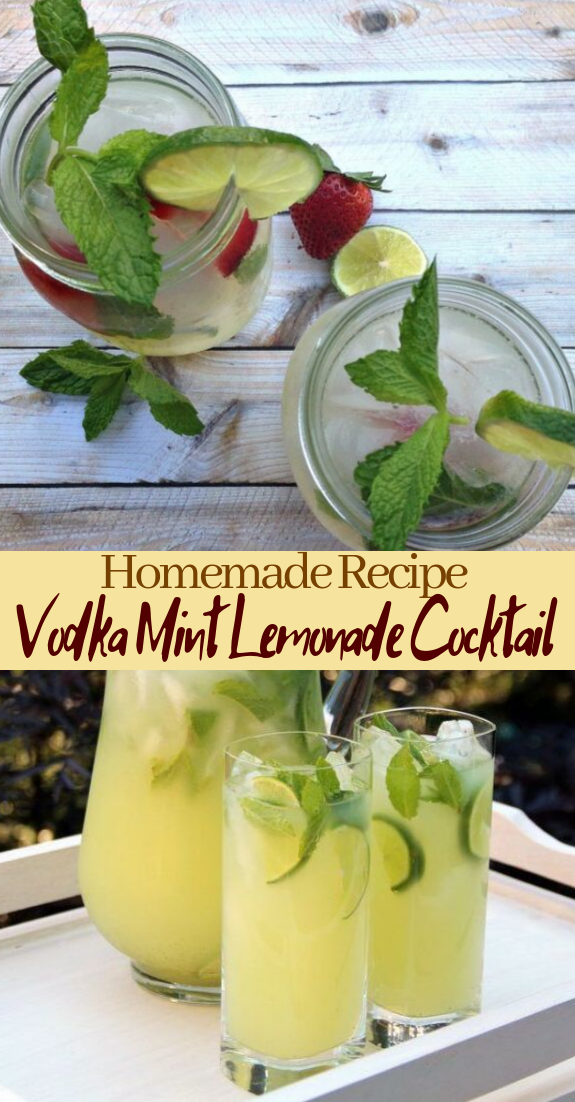 Vodka Mint Lemonade Cocktail  #healthydrink #easyrecipe #cocktail #smoothie