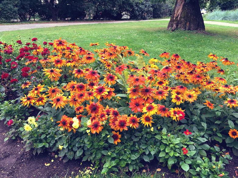 flower festival tallinn
