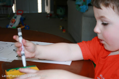 butterfly unit, toddler homeschool, coloring with toddler