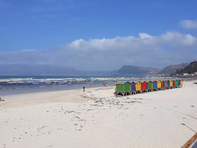 Muizenberg multi-coloured beach huts