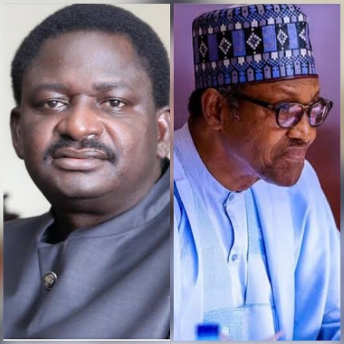 Femi Adesina Under Fire For Saying Nigerians Are Lucky To Have President Buhari