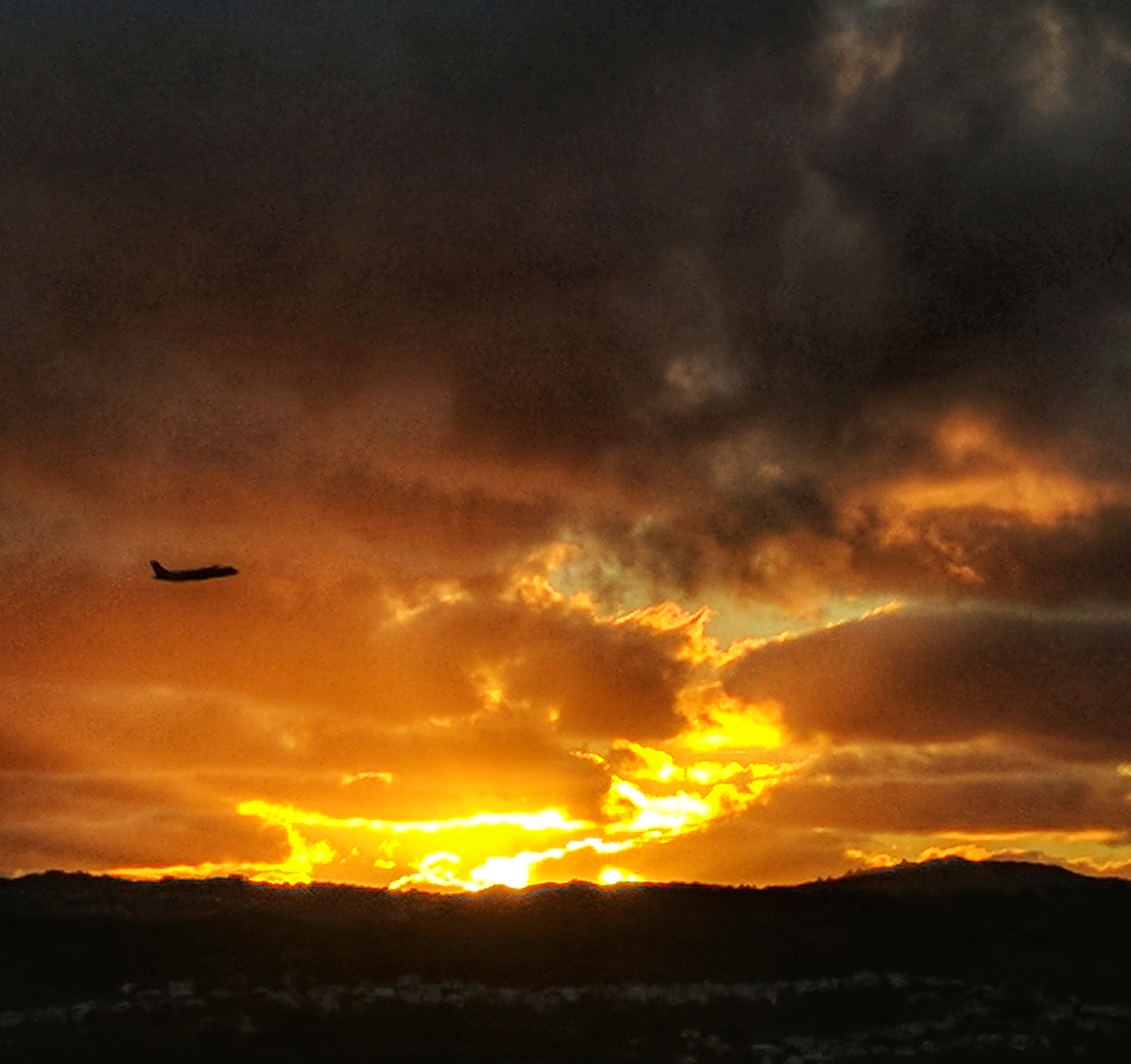 Silhouetted plane takes off before a dramatic Wellington sunset