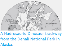 https://sciencythoughts.blogspot.com/2014/10/a-hadrosaurid-dinosaur-trackway-from.html
