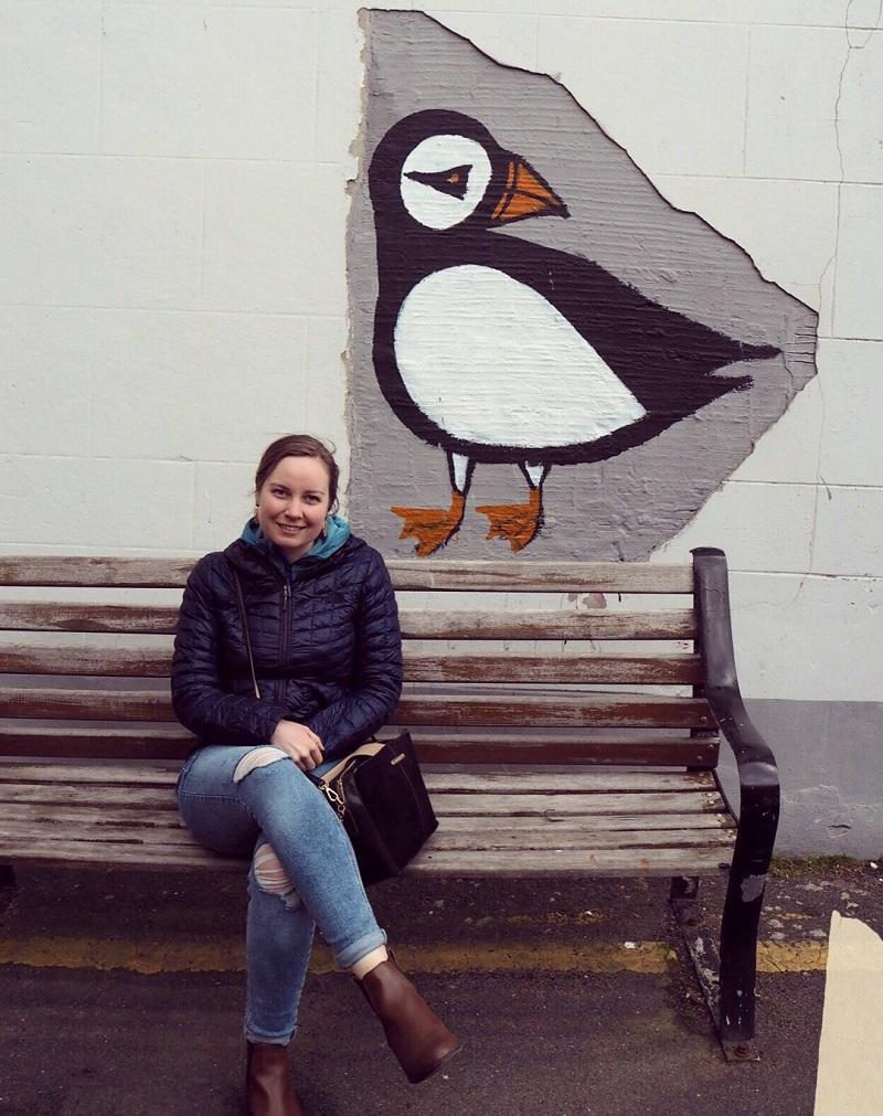 Shetland puffin mural, Lerwick