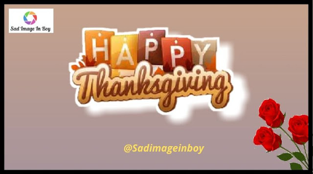 Happy Thanksgiving Images | happy thanksgiving funny, funny screensavers, happy thanks giving