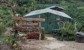 Parapat Taman Eden 100