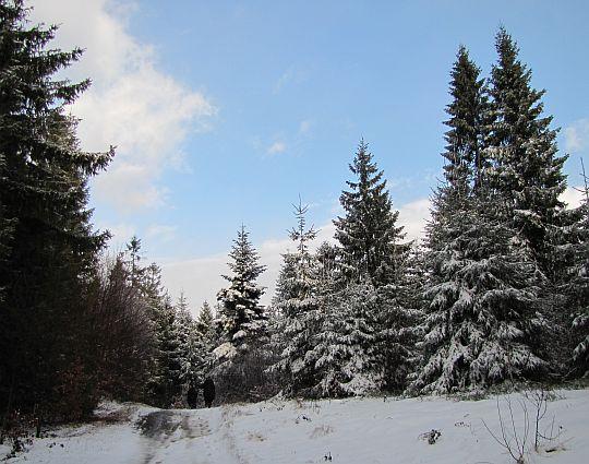 Zrobiło się tak biało, jak jeszcze nie było tej zimy.
