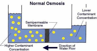 Cara kerja reverse osmosis