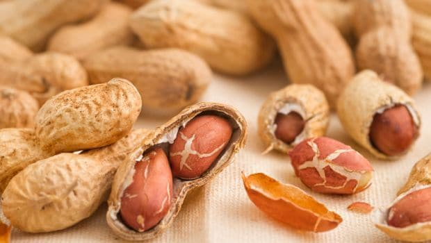 You can eat a small amount of nuts
