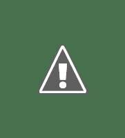Government job Logo