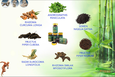 Bio nerve obat herbal alami