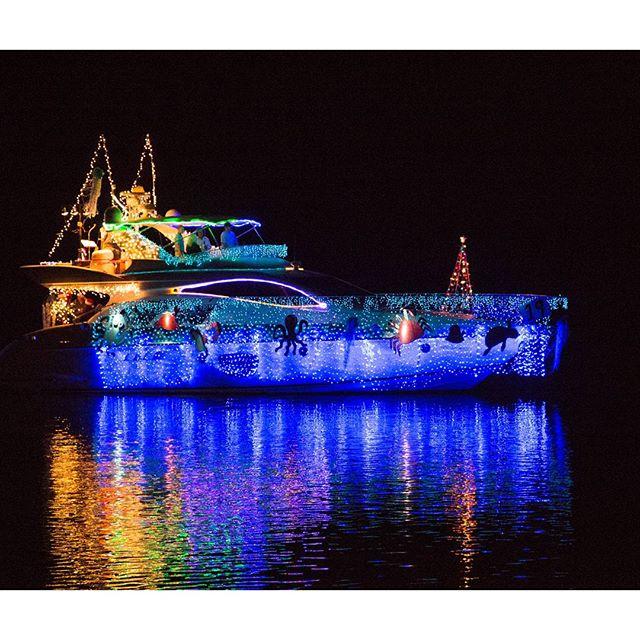 Dazzling Holiday Photos of North Carolina   Hines-Sight Blog