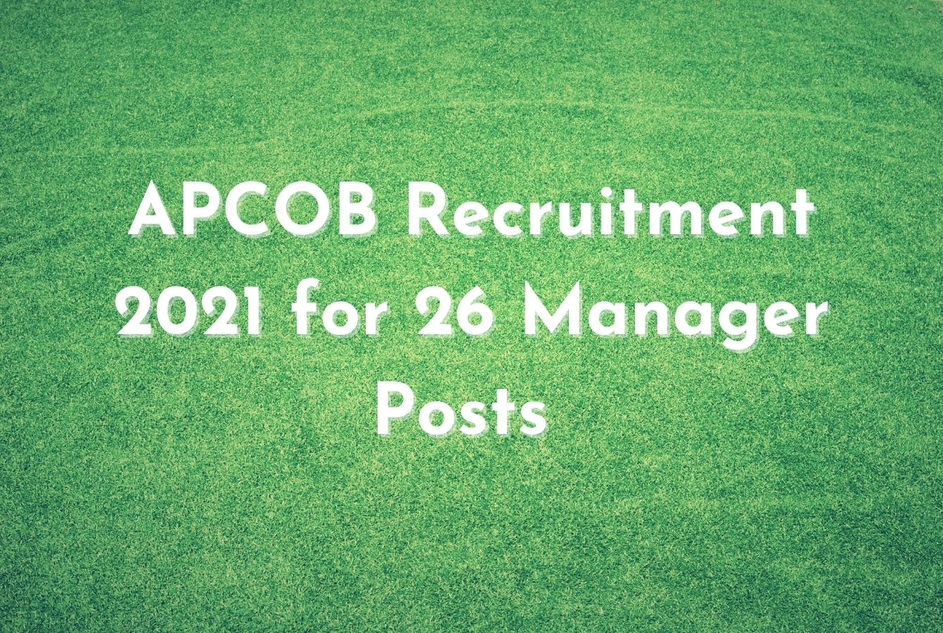 APCOB Recruitment 2021 for 26 Manager Posts
