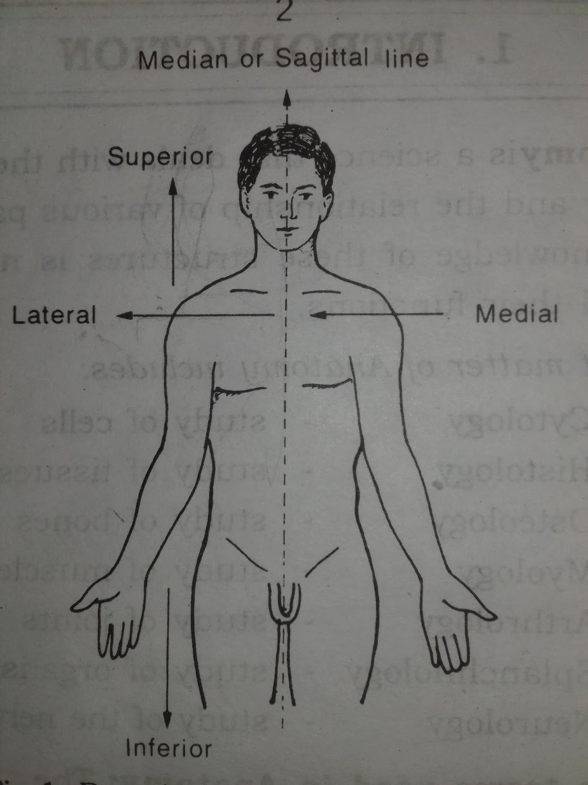 HUMAN ANATOMY AND PHYSIOLOGY GENERAL INTRODUCTION (B.PHARMACY ...
