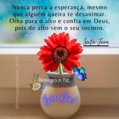 Nunca perca a esperança, mesmo que alguém queira te desanimar.  Olha para o alto e confia em Deusa, pois do alto vem o seu socorro.  Sexta-Feira  Bom Dia!