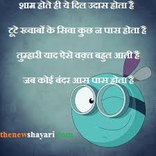 Insulting Shayari For Friends in Hindi-इज़्ज़त का भालुदा शायरी~Thenewshayari