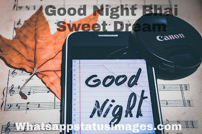 good night brother sms in hindi