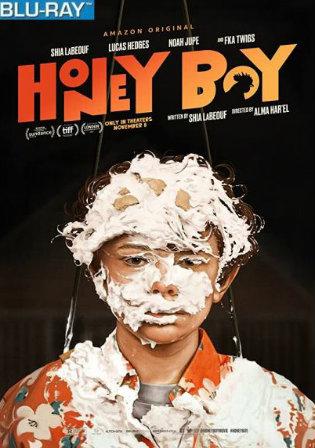 Honey Boy 2019 BRRip 300MB Hindi Dual Audio 480p