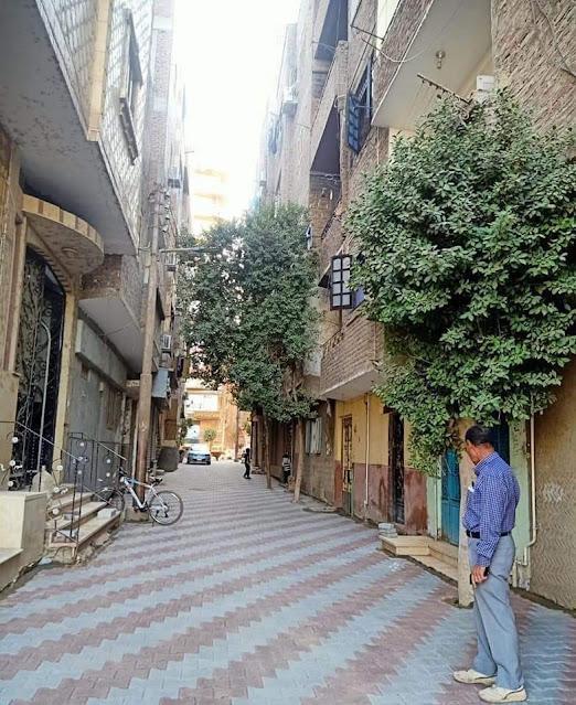 استمرار أعمال تركيب بلاط إنترلوك في 29 شارعاً فرعياً من الجمهورية بحي شرق سوهاج