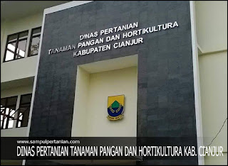 Alamat Dinas Pertanian Tanaman Pangan dan Hortikultura Kab. Cianjur