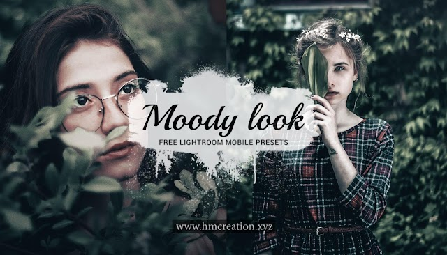 Free Moody look lightroom mobile presets and lightroom presets