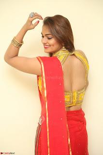 Actress Ashwini in Golden choli Red saree Spicy Pics ~  078.JPG