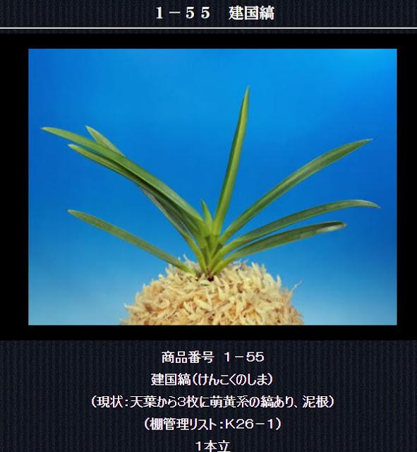 http://www.fuuran.jp/1-55.html
