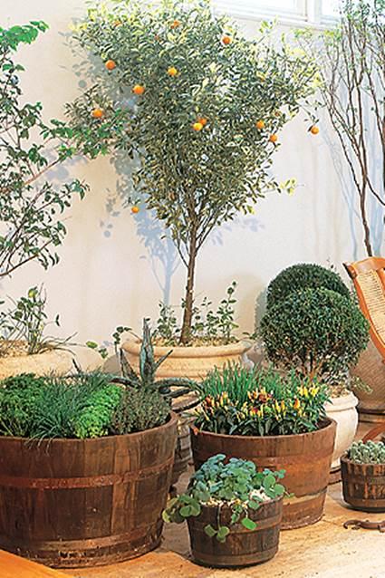 Where to put plants indoor plants arrangement ideas 3