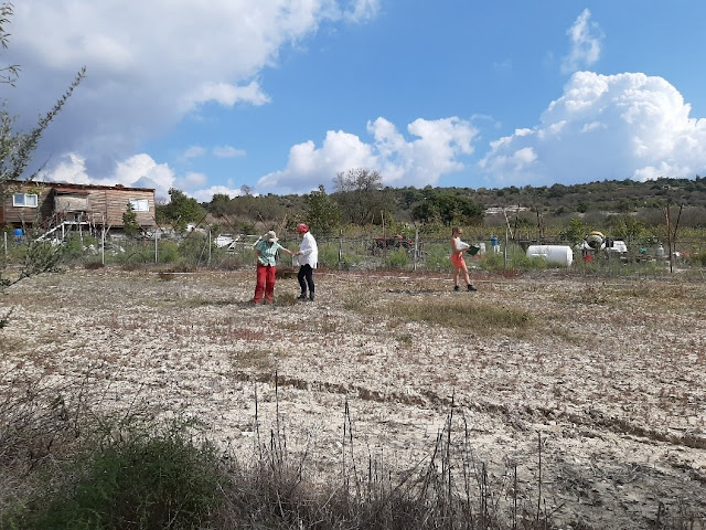 First survey campaign at Amargeti in Paphos completed