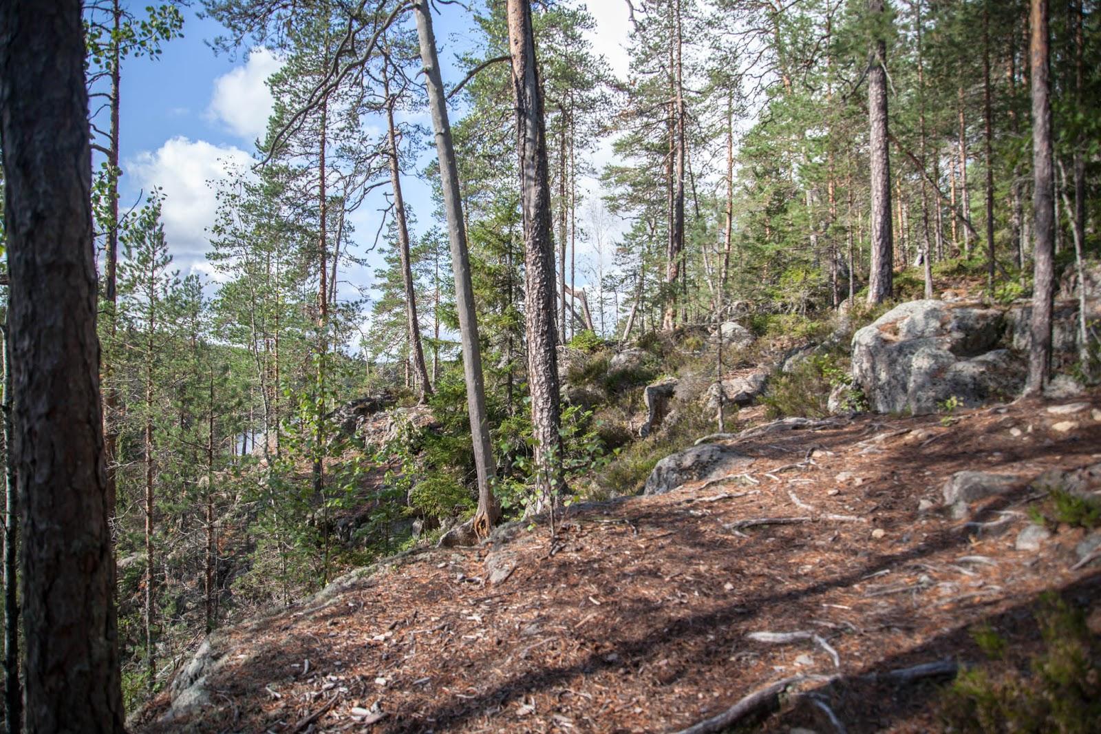 helvetinjärven kansallispuisto ruovesi metsä