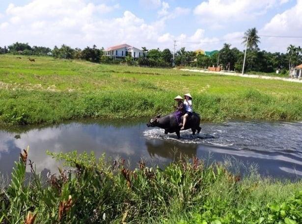 Review dịch vụ thuê xe Đà Nẵng đi Hội An