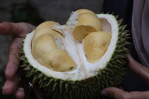 8 Manfaat Istimewa Buah Durian Dibalik Aroma Harumnya