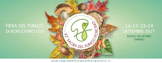 www.sagradelfungodiborgotaro.it