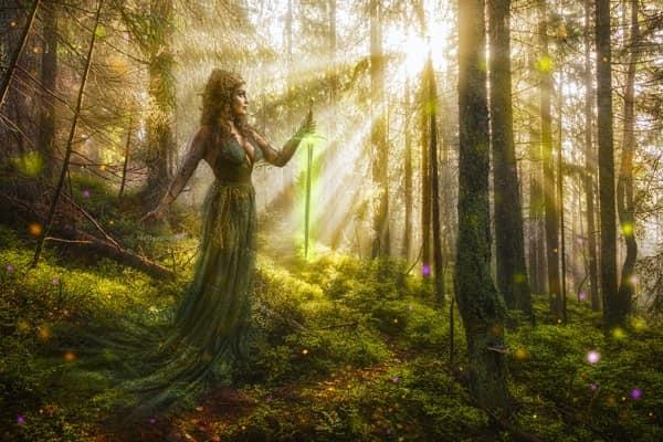 Linh hồn của cây cối và nguồn năng lượng ma thuật vô tận từ rừng xanh