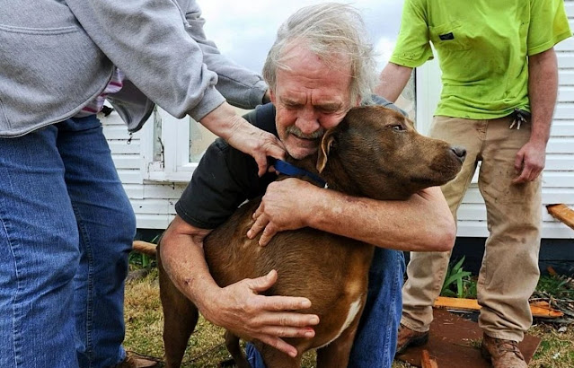 Мужчина потратил все сбережения, накопленные на протяжении жизни, на спасение тяжело больной собаки