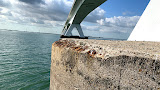 Wat doet 60 jaar zeeklimaat met de Zeelandbrug?