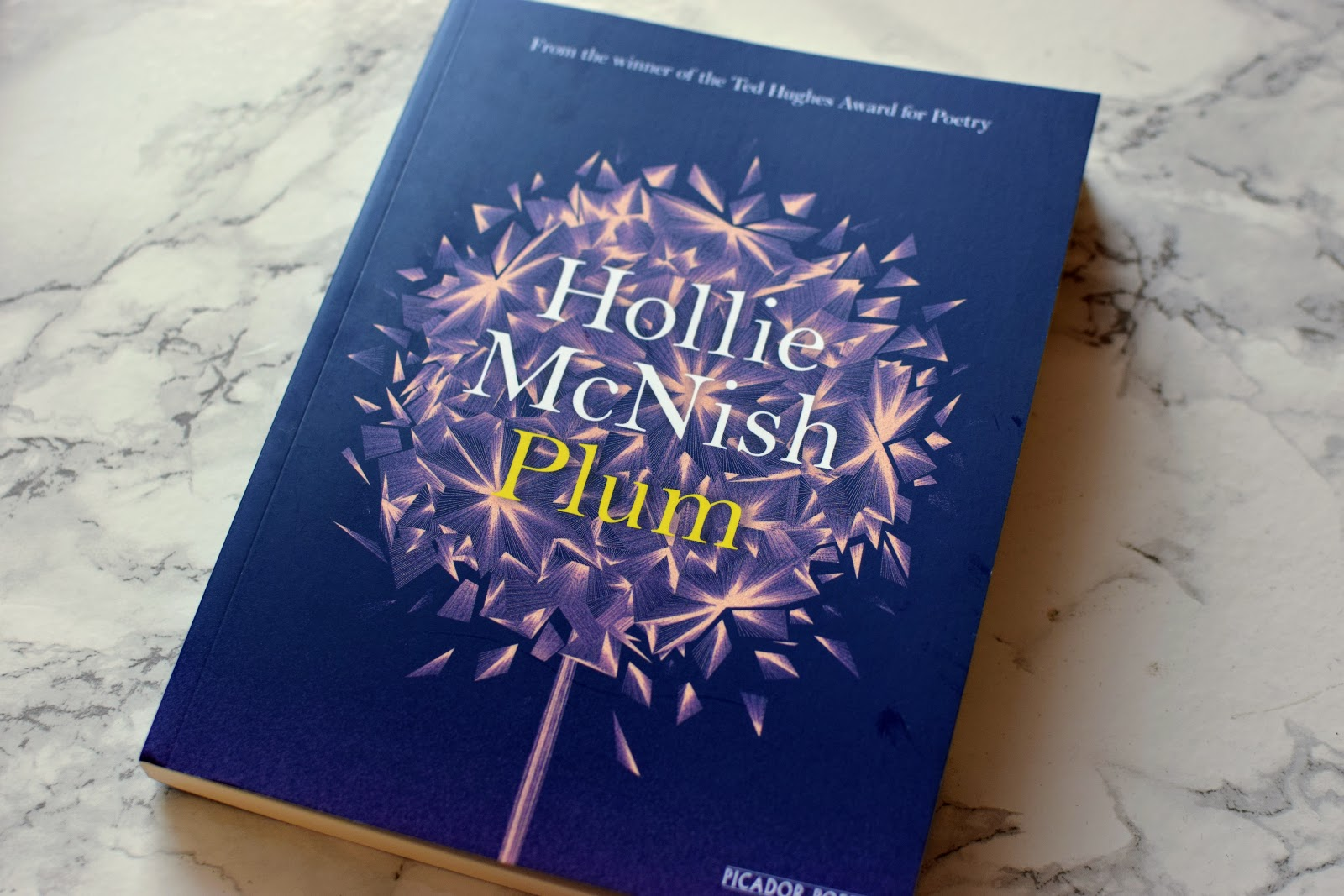 , Plum by Hollie McNish Review and Giveaway