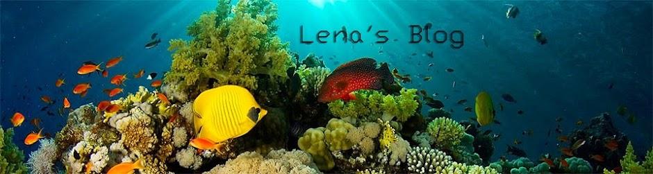 lena s blog w e b dubois and booker t washington comparison essay lena s blog