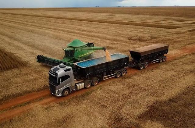 Nenhum produtor de MT está entre os ganhadores do Desafio Nacional de Máxima Produtividade de Soja