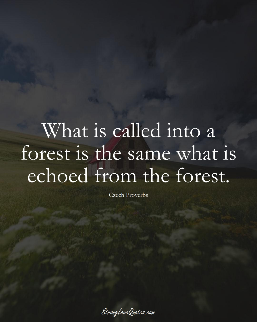 What is called into a forest is the same what is echoed from the forest. (Czech Sayings);  #EuropeanSayings