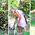 Buwis buhay na umaakyat sa puno ng kawayan ang isang 83-anyos na Lola para kumuha ng hahabiin at ibebentang basket