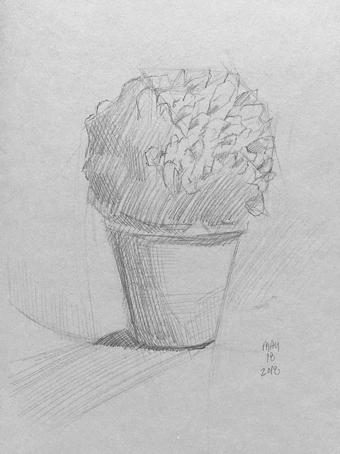 Daily Art 05-19-18 sketch of little potted plant in grey toned Stillman and Birn Nova sketchbook