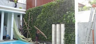 Taman dinding pinggir kolam renang