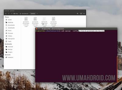 Set Up ProtonVPN di Linux Ubuntu