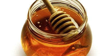 Μεγάλη μείωση φέτος στην παραγωγή μελιού, αποζημιώσεις ζητούν οι μελισσοκόμοι