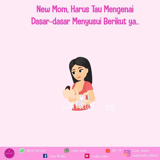 Dasar-dasar Menyusui Untuk Ibu Baru